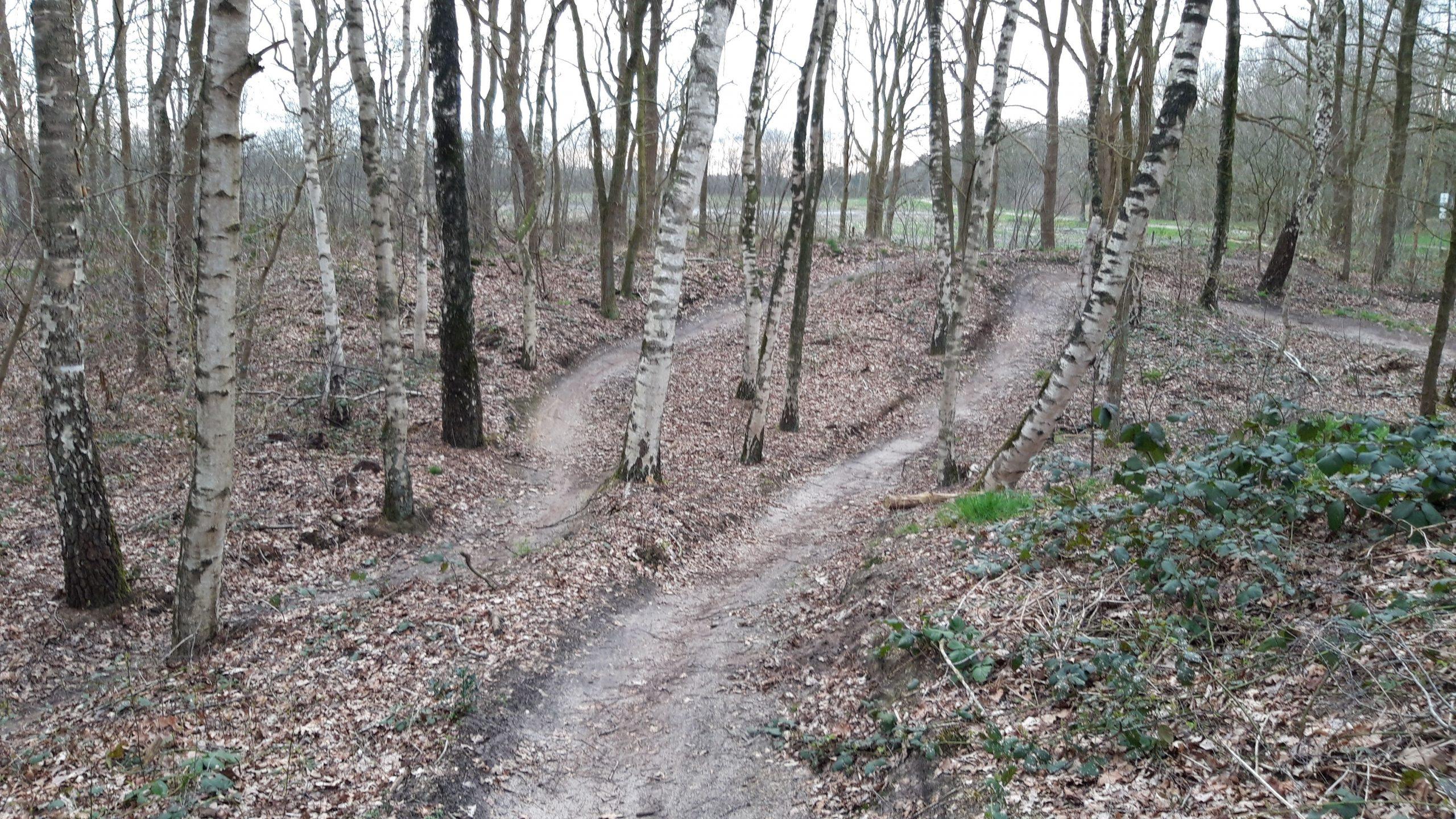 Bikepark Terhorst 04